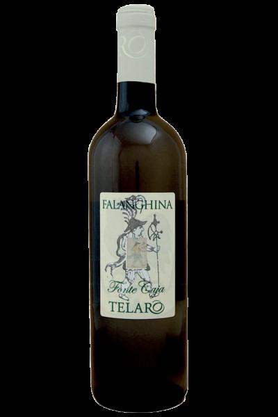 Falanghina Fonte Caja 2019 Telaro