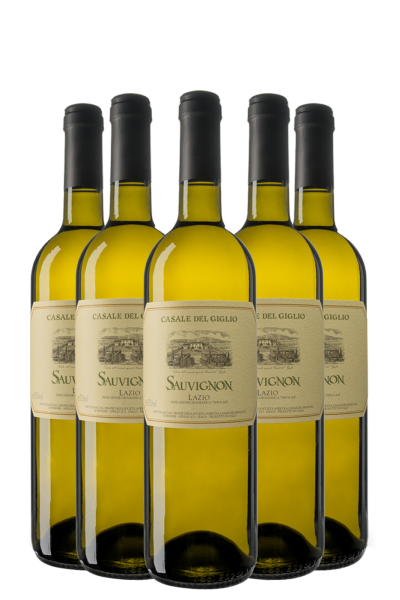 6 Bottiglie Sauvignon 2020 Casale Del Giglio