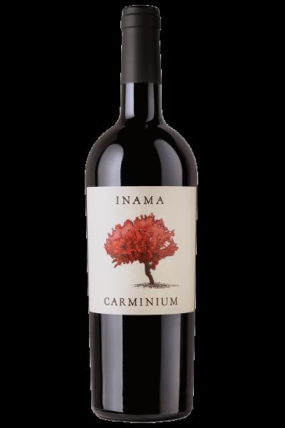 Colli Berici DOC Carmenere Carminium 2017 Inama