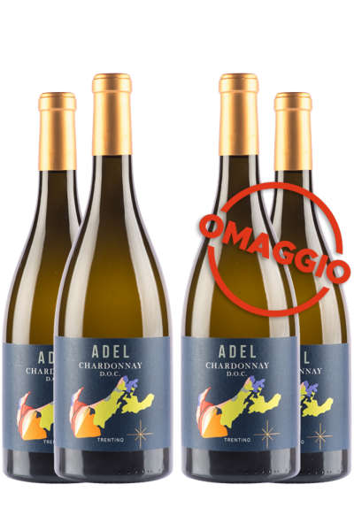 6 Bottiglie Trentino DOC Chardonnay 2019 Selezione Adel + 6 OMAGGIO