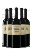 6 Bottiglie Shiraz 2019 Casale Del Giglio