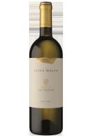Alto Adige DOC Sauvignon Castel Ringberg 2019 Elena Walch