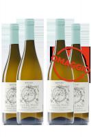 6 Bottiglie Soave Classico DOC Luce Del Pozzo 2019 Bovaro + 6 OMAGGIO