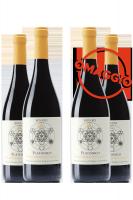 6 Bottiglie Valpolicella Classico DOC Platonico 2019 Bovaro + 6 OMAGGIO