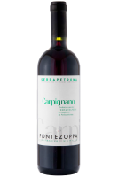 Serrapetrona DOC Carpignano 2013 Cantine Fontezoppa