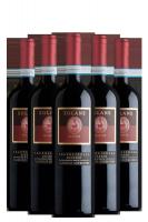 6 Bottiglie Valpolicella Classico Superiore Ripasso DOC Solane 2016 Santi