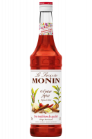Sciroppo Monin Spicy 70cl