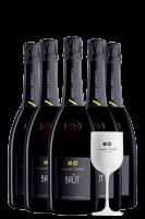 6 Bottiglie Franciacorta DOCG Brut Contadi Castaldi