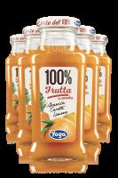 Yoga 100% Veggie Arancia Carota Limone Confezione Da 12 Bottiglie