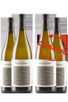 6 Bottiglie Falerio DOC Pecorino 2019 Boccafornace + 6 OMAGGIO