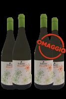 6 Bottiglie Narciso Bellone 2018 Federici + 6 OMAGGIO