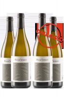 6 Mezze Bottiglie Falerio DOP Pecorino 2018 Boccafornace 375ml + 6 OMAGGIO
