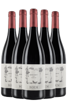 6 Bottiglie Trentino DOC Pinot Nero 2017 Boem