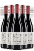 6 Bottiglie Trentino DOC Cabernet 2018 Boem