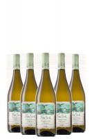 6 Bottiglie Verdicchio Di Matelica DOC Note Verdi 2015 Antica Concia 375ml