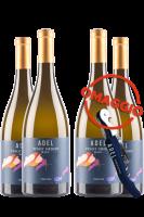 6 Bottiglie Trentino DOC Pinot Grigio 2017 Selezione Adel + 6 OMAGGIO