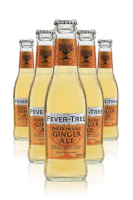 Fever Tree Spiced Orange Ginger Ale Cassa da 24 bottiglie x 20cl