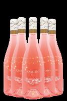 6 Bottiglie Toscana Rosato Santa Cristina 2020 Antinori