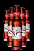 Budweiser Cassa da 24 bottiglie x 33cl
