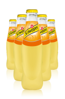 Schweppes Orange Cassa da 24 bottiglie x 18cl