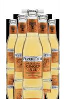 Fever Tree Spiced Orange Ginger Ale Cassa da 24 bottiglie x 20cl