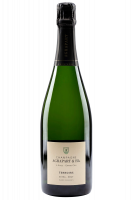 Extra Brut Blanc De Blancs Grand Cru Terroirs Agrapart 75cl