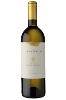 Alto Adige DOC Pinot Grigio Castel Ringberg 2017 Elena Walch
