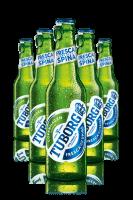 Tuborg Cassa da 24 bottiglie x 33cl