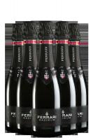 6 Bottiglie Trento DOC Maximum Brut Ferrari 375ml