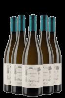 6 Bottiglie Trentino DOC Gewürztraminer 2020 Boem