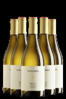 6 Bottiglie Colli Orientali Del Friuli DOC Ribolla Gialla 2020 Angoris