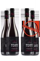 6 Bottiglie Sicilia DOC Nero D'Avola Riparo Cafici 2019 L'Ariddu + 6 OMAGGIO