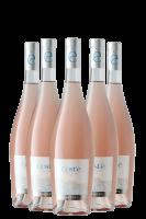 6 Bottiglie Toscana Rosato Cost'è 2019 Banfi