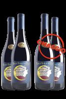 6 Bottiglie Syrah Barbarella 2017 Du'Casette + 6 OMAGGIO