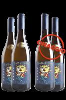6 Bottiglie Sò Bellone 2019 Du'Casette + 6 OMAGGIO