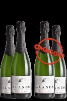 6 Bottiglie Metodo Classico Alanus Brut Millesimato Blanc De Noir 2017 (Astucciato) + 6 OMAGGIO