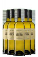 6 Bottiglie Satrico 2020 Casale Del Giglio
