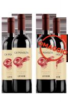 6 Bottiglie Merlot D'Italia 2020 Ca' Povolta + 6 OMAGGIO