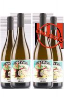 6 Bottiglie Sicilia DOC Grillo Vovò 2018 L'Ariddu + 6 OMAGGIO