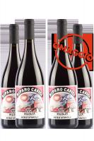 6 Bottiglie Sicilia DOC Nero D'Avola Riparo Cafici 2018 L'Ariddu + 6 OMAGGIO