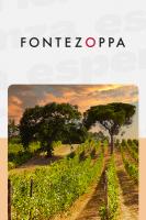Visita con Pranzo o Cena alla Cantina Fontezoppa