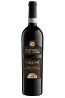 Amarone Della Valpolicella DOCG 2016 Bottega